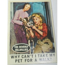 Filmways Beverly Hillbillies Collector Card No. 21